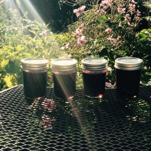 One batch of our homemade jam!